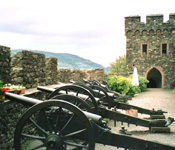 Rhine Castle Hotel Burg Reichenstein cannons photo